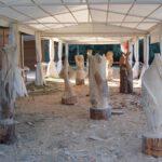 Nartura Lleida 2007 3